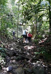 Die groepie Suid-Afrikaners het maar swaar getrek in die hoë humiditeit van die reënwoude van Maleisië tydens Terrance se besoek daar.