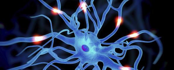 Hoe werk motorneuronsiektes?