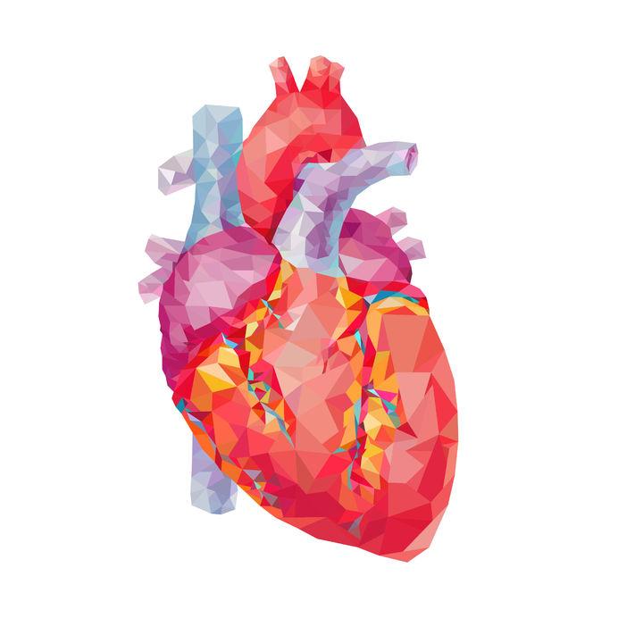 Só maak dokters aortaklep reg sonder borskas-oopsny