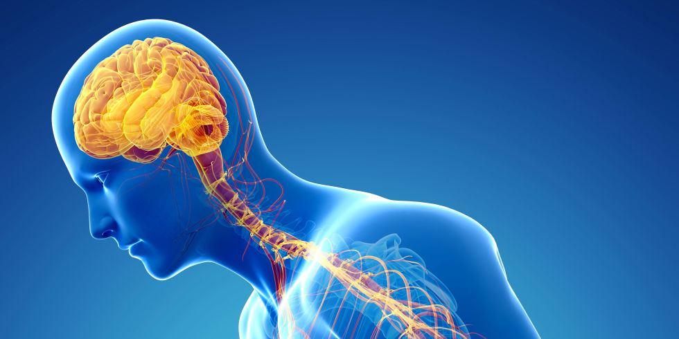 Dobbel, dopamien en Parkinson se siekte