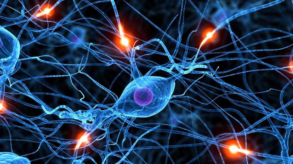 Wat is die impak van selfone op die ontwikkeling van die brein?