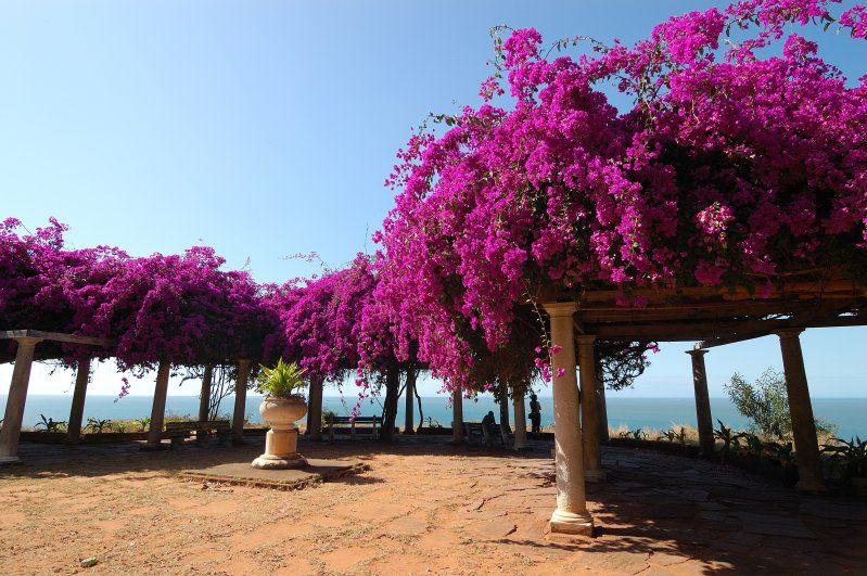 Maputo: kleurvolle hoofstad van ons buurland
