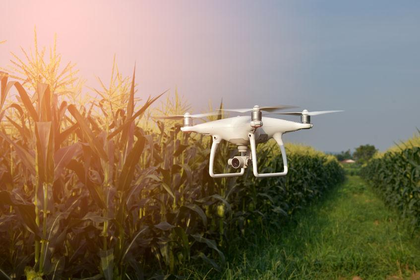 Wat is die impak van landbou-tegnologie op plaas-arbeid?