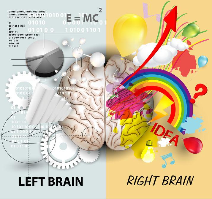 Die geheime van die brein