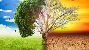 Is aardverwarming feit of foefie?