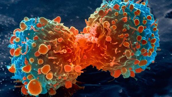 Wat is kanker?