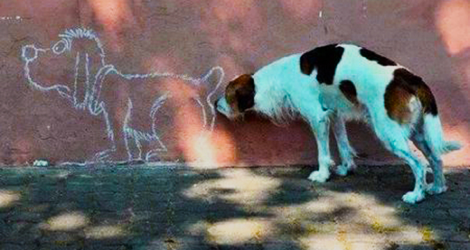 Wat vertel 'n hondereuk die ruikende hond?