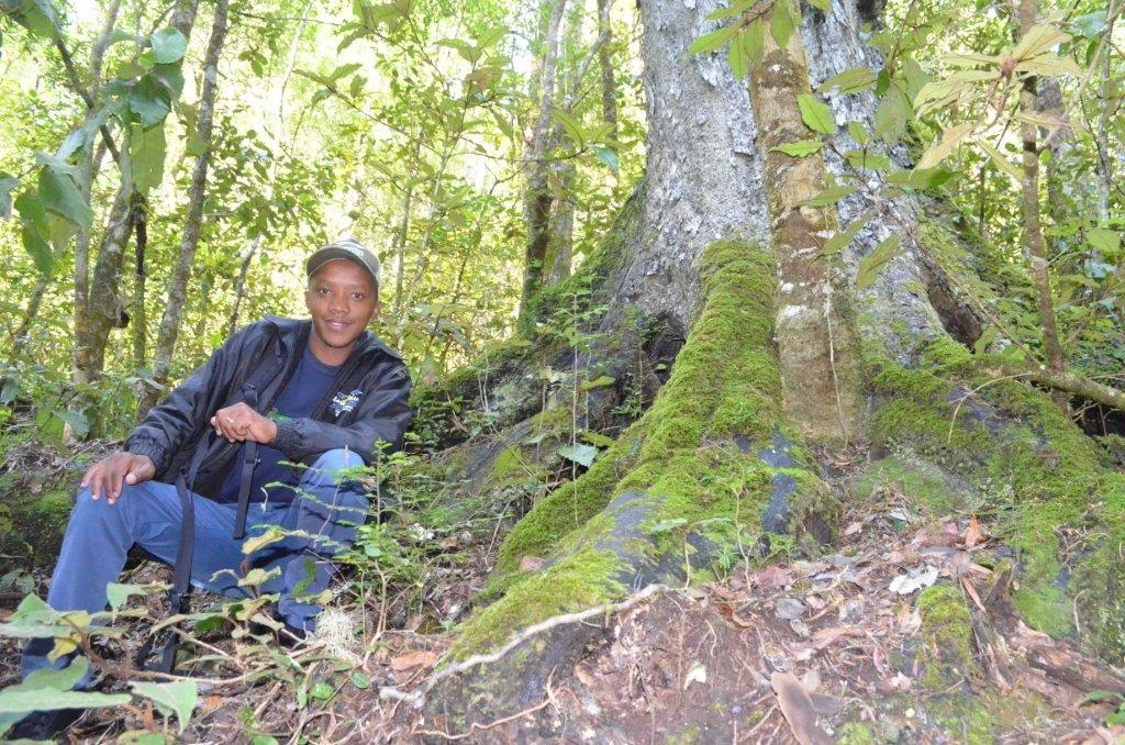 'n Tsitsikamma bos-belewenis met Heiney Jacobs