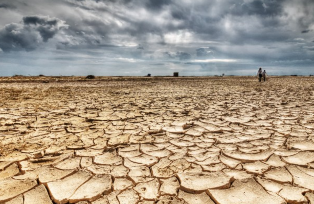 Die gesig van droogte is wreed